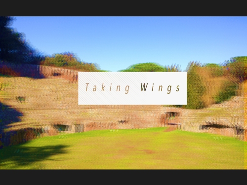 Taking Wings cover